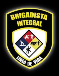Brigadista-Integral