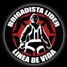 Brigadista-Lider